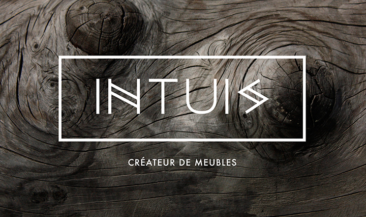 intuis01